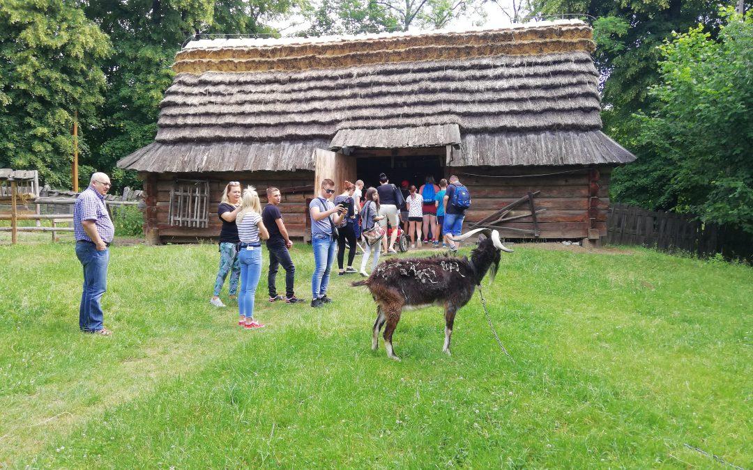 Wycieczka                                 do Muzeum Wsi Lubelskiej oraz Mania Skakania